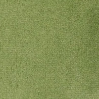 barva tm.zelená 4E13